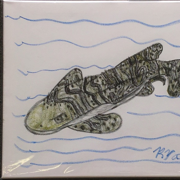 "Art by Ryan Other - ""Zebra Shark"" on Stretched Canvas by Ryan"